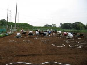 大平遺跡:縄文中期前半住居跡
