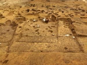 皂樹原・檜下遺跡:重なり合った竪穴住居跡