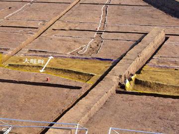 下田遺跡:検出された条里水田の畔