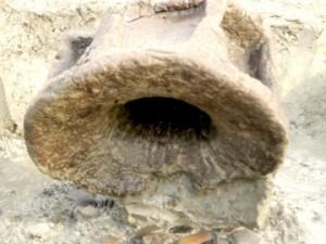 反町遺跡:木製臼(古墳時代前期)