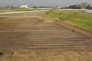 皿沼西遺跡:集落の周囲に広がる畠跡