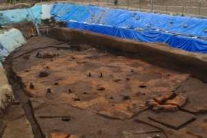 床全面に焼土を敷き詰めた住居跡
