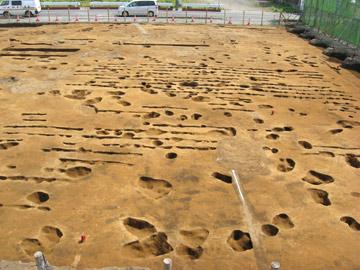 二ツ家下遺跡:畑の畝跡(左右に走る細い溝)