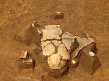 中井遺跡:土壙から出土した深鉢形土器
