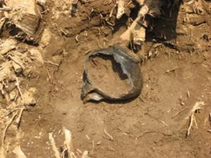 大木戸遺跡:縄文時代後期の注口土器