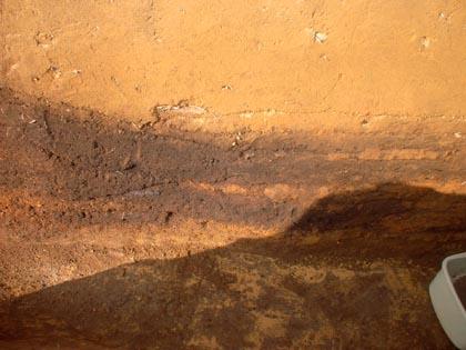 大山遺跡:炭窯断面