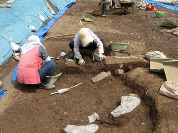 下田遺跡:手前が中世の屋敷跡、奥が古代の水田跡
