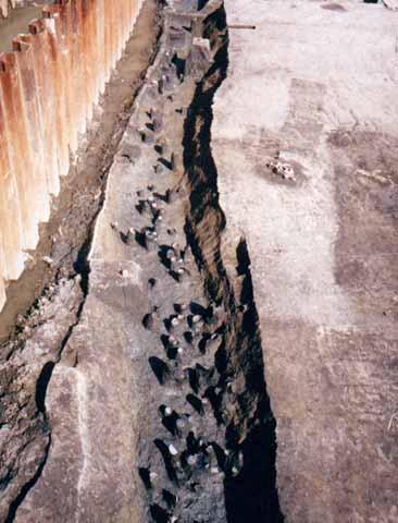 下田町遺跡:土器がたくさん捨てられていた溝
