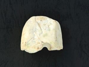 諏訪野遺跡:硬玉製大珠
